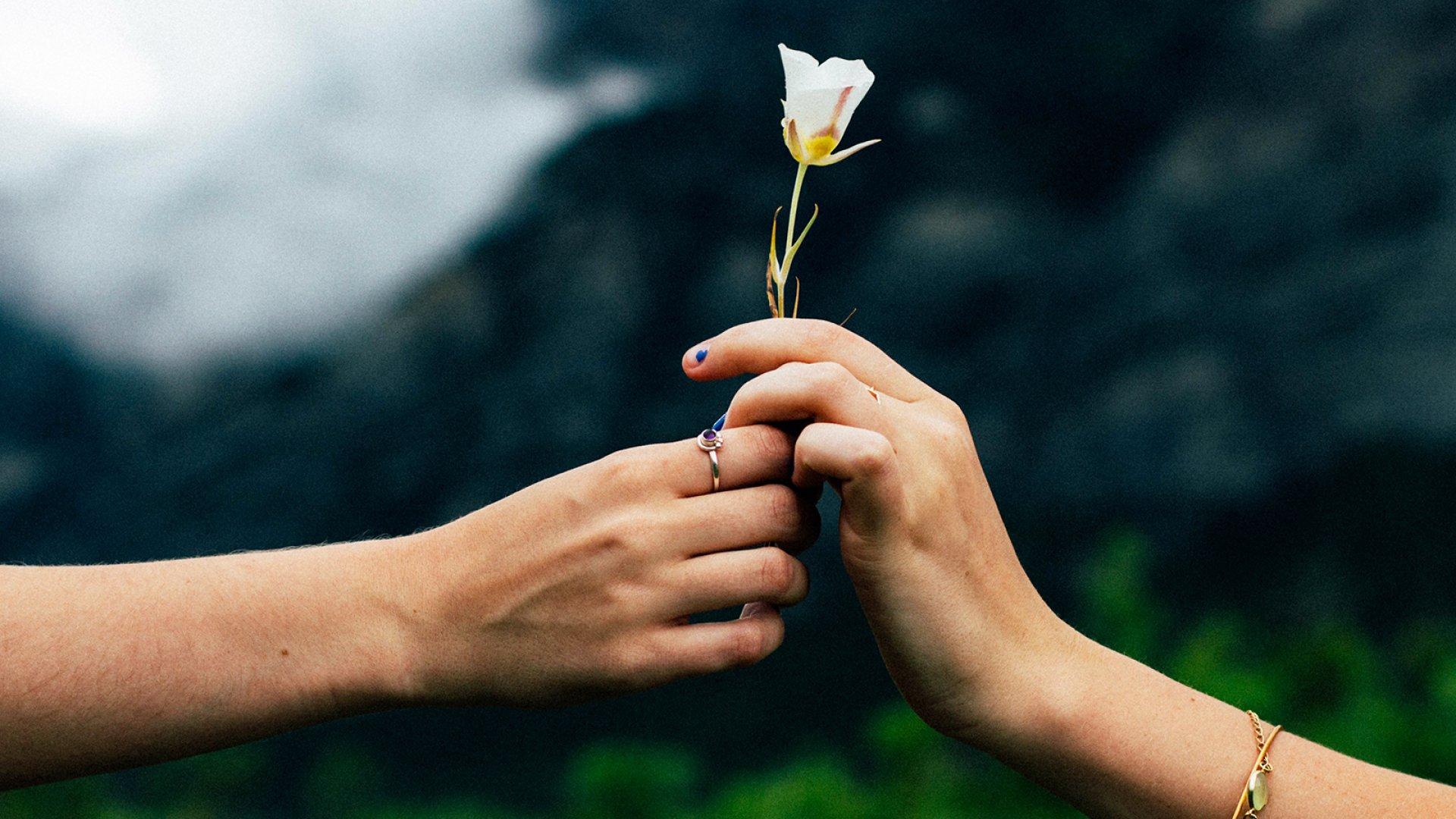 چگونه دیگران را ببخشیم؟